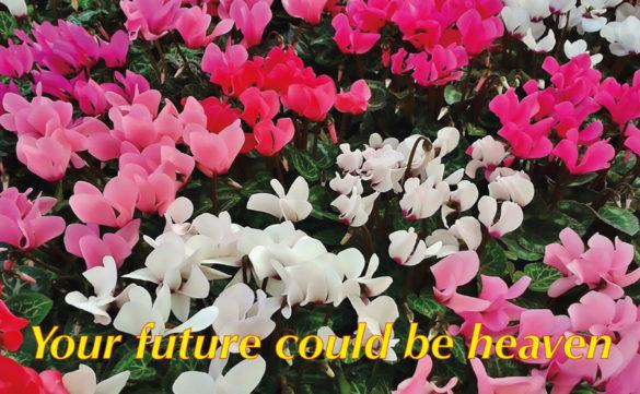 Un mazzolin di fiori per l'Apocalisse, opera di Mara Jvonne Raya.